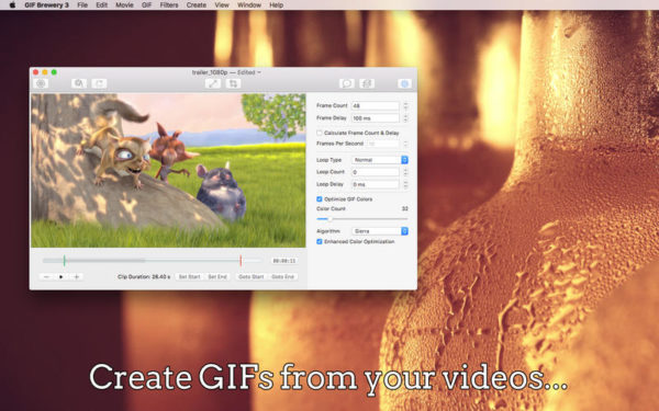 make a gif from a video