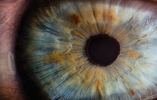 what is cornea - kornea nedir göz eye